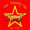 The Training Fox Logo
