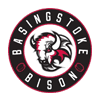 Basingstoke Bison
