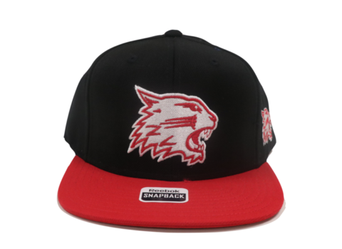 Wildcats Snapbacks